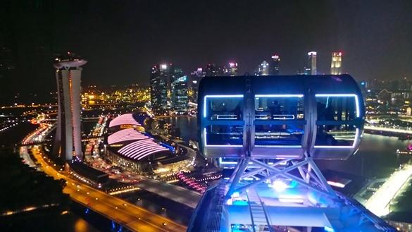 Singapore Flyer (1)