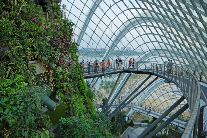 Cloud_Forest,_Gardens_by_the_Bay,_Singapore_-_20120617-03