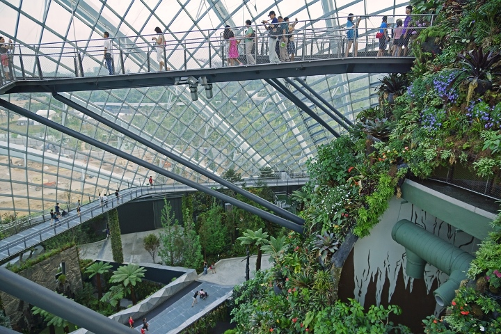 Cloud_Forest,_Gardens_by_the_Bay,_Singapore_-_20120617-04