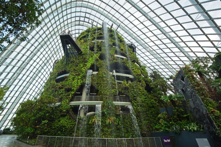 The_Fall_in_the_Cloud_Forest,_Gardens_by_the_Bay,_Singapore_-_20120617-01