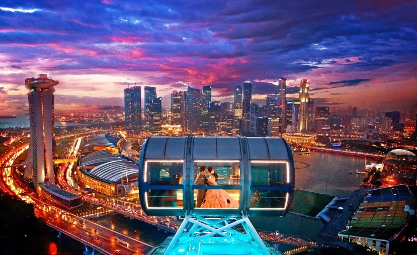 Singapore-Flyer-Capsule-Night-View