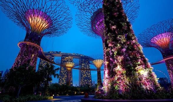 39528-Singapore-Gardens-By-The-Bay